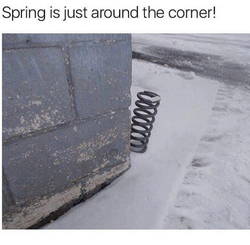 spring-is-just-around-the-corner-43480371