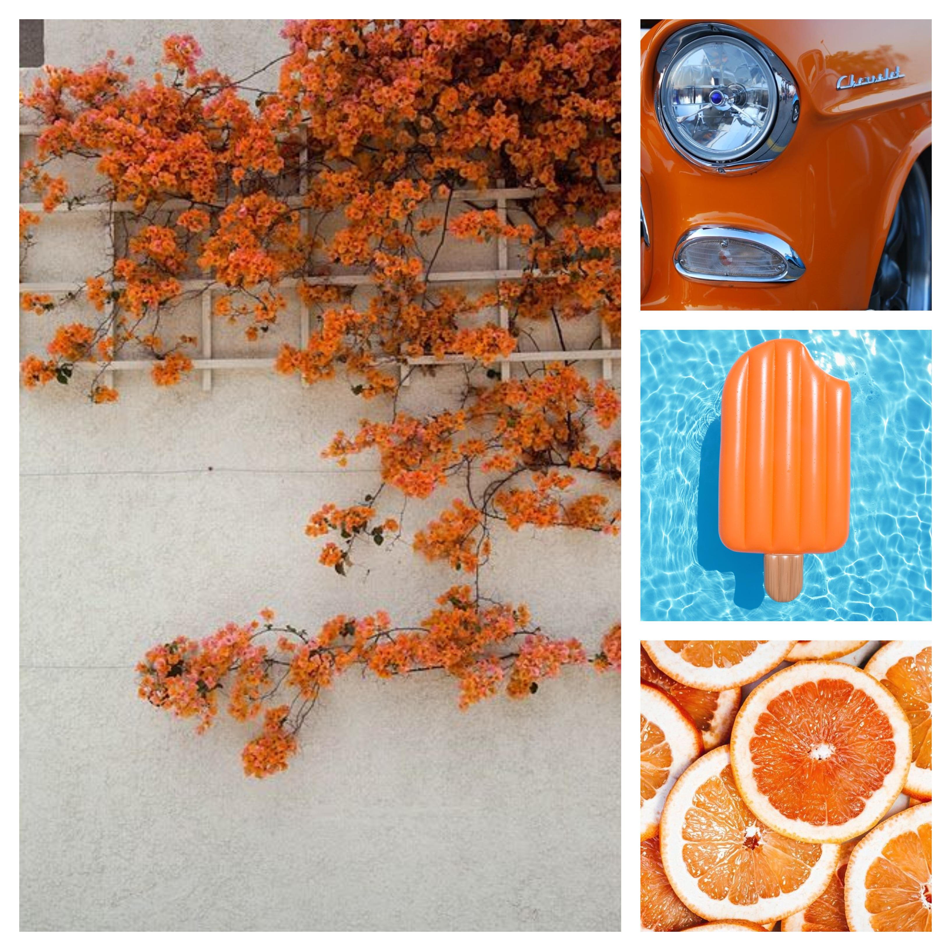 Orange Aesthetic